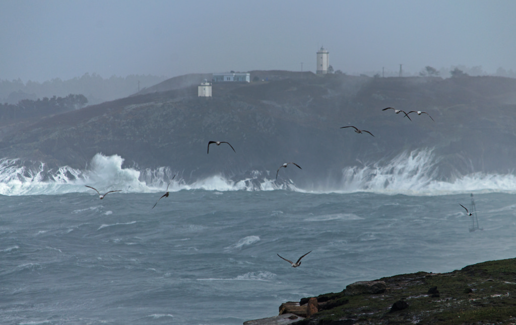 Mera Oleaje